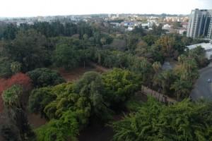 Harare run