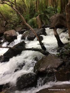Victoria Falls upclose