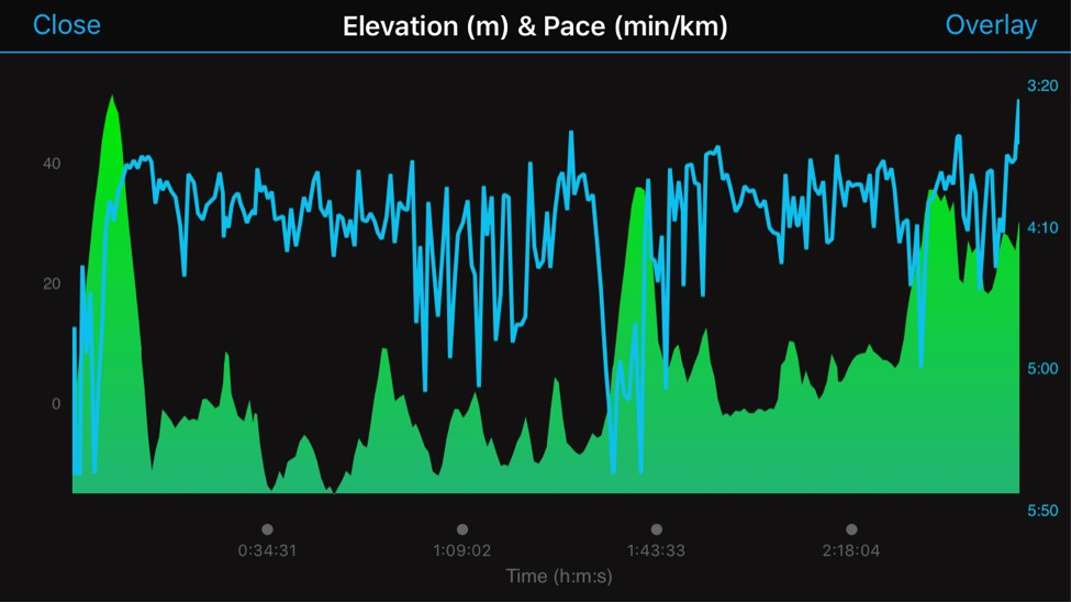 ny - elevation profile